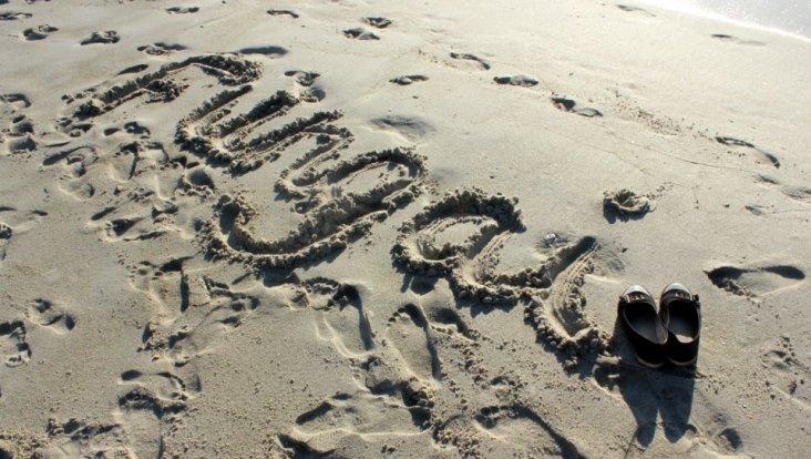 Fungai Name In Sand